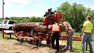 Real men at work sawing huge cherry slabs! Wood-Mizer