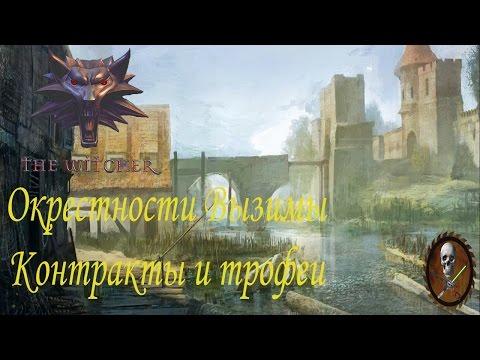 Ведьмак 1 (The Witcher) Окрестности Вызимы Контракты