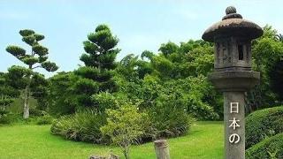 Japanese Music - Traditional Bamboo Flute, Koto, Shamisen - Zen Music l Sen Vàng VTV