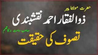 Tasawwuf Ki Haqeeqat Peer Zulfiqar Ahmad Naqshbandi D B