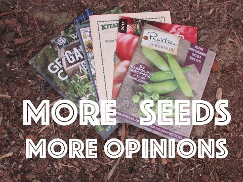 Oxbow Farm Honorable Mention Seed Companies - Yet More Opinions!
