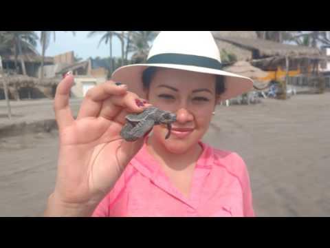 PASEO POR ACAPULCO - HOLIDAY INN - 22 DE SEPTIEMBRE - FAMILIA CHILUISA