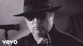Van Morrison   Days Like This (official Video)