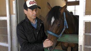 【日本ダービー】アルアイン、サトノアーサー、ペルシアンナイト・池江泰寿調教師 2度目のダービー制覇へ