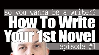 how to write your first novel so you wanna be a writer 1