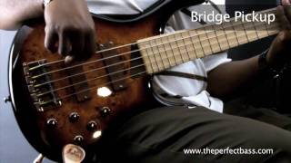 MTD Kingston Z5 Bass w/ Maple Fingerboard Demo - The Perfect Bass