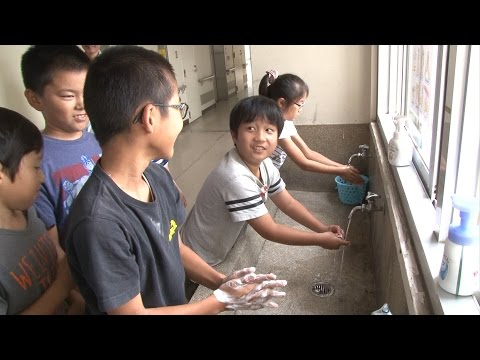 Handwashing to Save the World: Globalizing a Childhood Habit