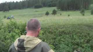 Погоня за черными лесорубами / The pursuit of black loggers
