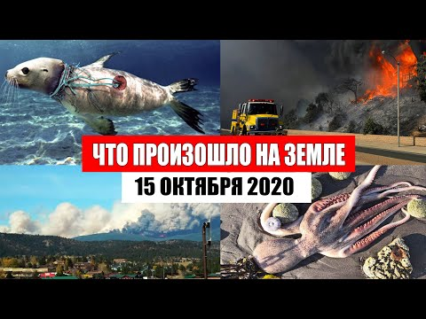 Катаклизмы за день 15 октября 2020 | месть природы,изменение климата,событие дня, в мире,боль земли - Видео онлайн