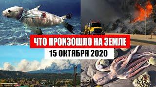 Катаклизмы за день 15 октября 2020 месть природы изменение климата событие дня в мире боль земли
