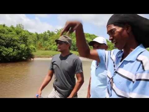 Invest St lucia, Minister Bradly Felix tour Mangrove stlucia