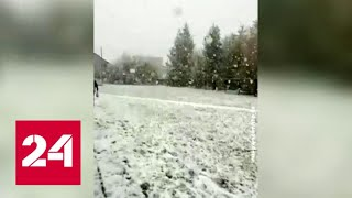 Репетиция Зимы: когда Уйдет Арктический Холод - Россия 24. Трусы Женские для Зимы