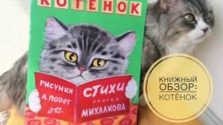 """Обзор детских книг. Книга """"Лис и Мышонок"""" В.Бианки"""