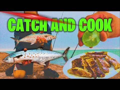 catch and cook spanish mackerel
