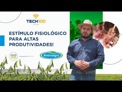 Tech100 Virtual -