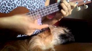 Video Mocca - On The Night Like This Ukulele Cover download MP3, 3GP, MP4, WEBM, AVI, FLV Desember 2017