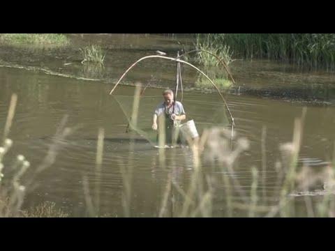 """Rîul Răut, """"în Ghearele"""" Pescarilor De Ani De Zile: Cine Va Opri Catastrofa"""