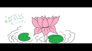 Easy Kids Drawing Lessons : How to Draw a flower- LOTUS  easy for KIDS