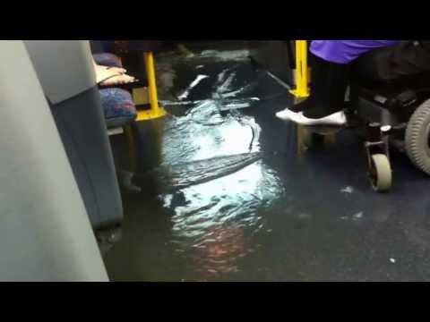 Flood on the Mississauga Bus