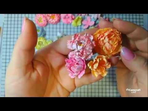 Сигареты по цветам