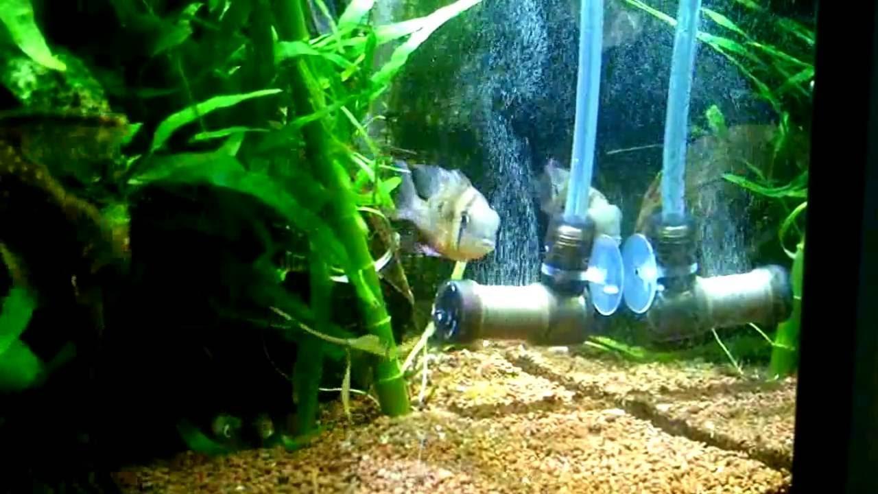 Aquarium fish tank co2 atomizer system - Aquarium Co2 System Atomizer Diffuser L Size
