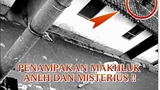 """VIDEO PENAMPAKAN MAKHLUK ANEH """"BERLARI DIATAS RUMAH WARGA"""" PENAMPAKAN MAKHLUK MISTERIUS DI DUNIA !!"""