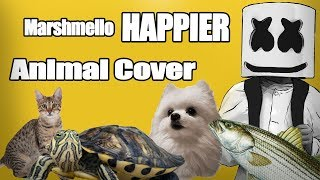 Marshmello Happier - Animal Cover Video
