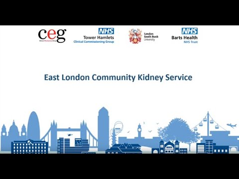 CKD Service Overview