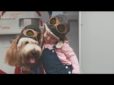 Introducing Virgin Australia Canine Crew from YouTube · Duration:  1 minutes 6 seconds