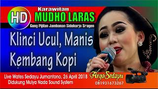 Mudho Laras (HD) GAYENG POLL Cokek Mania Live Wates Sedayu Jumantono