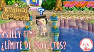 Animal Crossing New Leaf - Ashely Time - ¿Límite de proyectos?