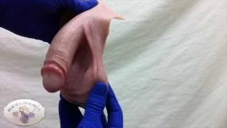 Repeat youtube video REELMAGIK Silicone Medical Prosthetic: FTM Packer 4.5