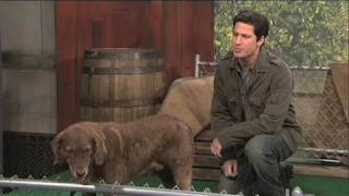Mark Wahlberg responds to SNL