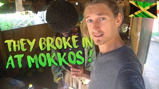 Someone broke into Mokko