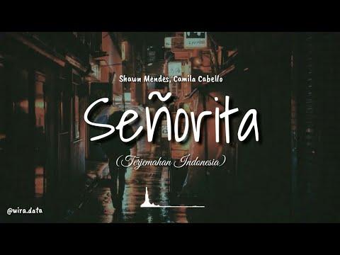 Senorita Lirik Lagu Terjemahan
