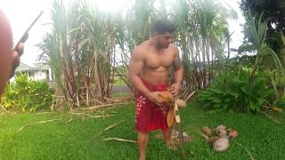 Cooking Sustainably (Umu) Samoan Style COM 344 Final Class Project
