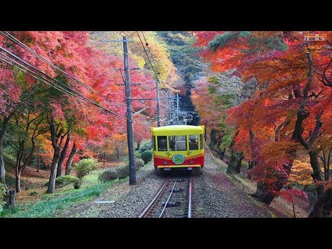 The Most Beautiful Scenery in the World - Japan
