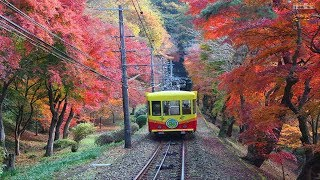 vuclip The Most Beautiful Scenery in the World - Japan