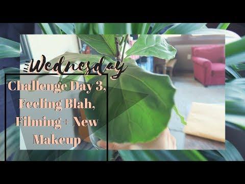 11.14.18   Challenge Day 3, Feeling Blah, Filming + New Makeup