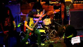 "Bison BC - ""Stressed Elephant"" 
