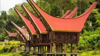 Suara Tarik Walet Sulawesi RUKUN BERSAMA 吞下鸟 Swallows Sounds   YouTube
