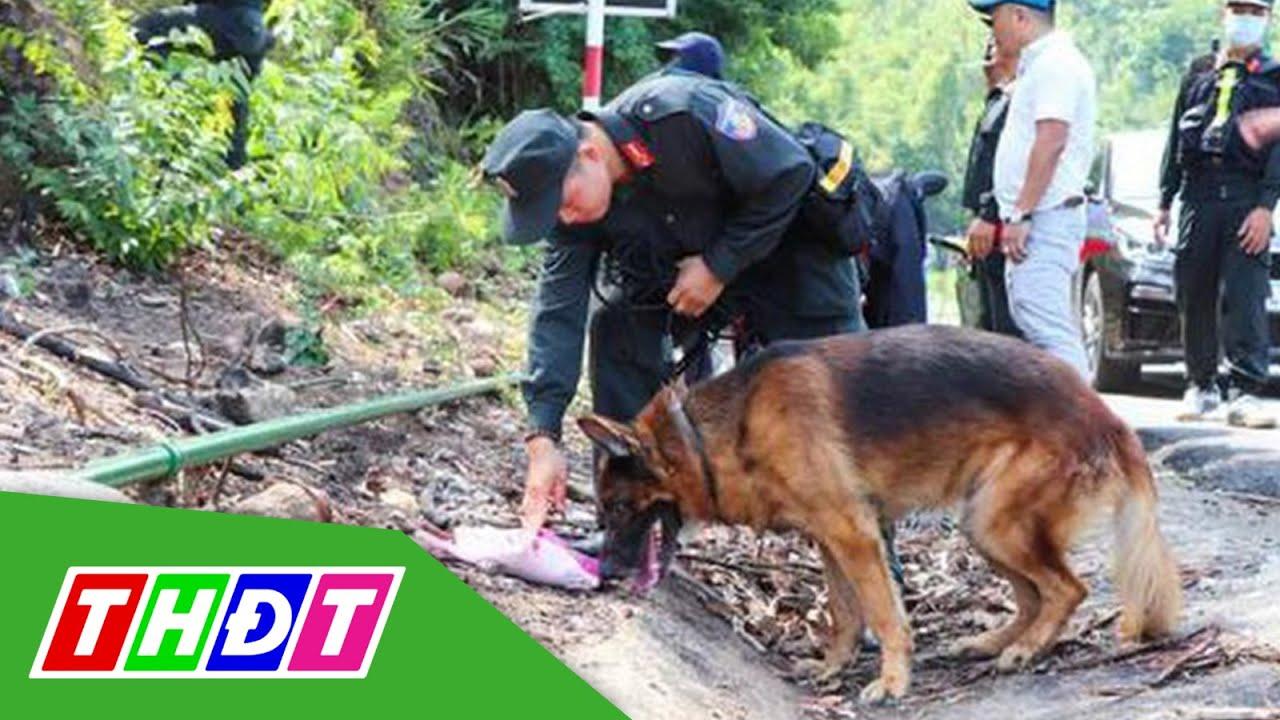 Bác tin chó nghiệp vụ hy sinh khi truy tìm phạm nhân trốn trại | THDT