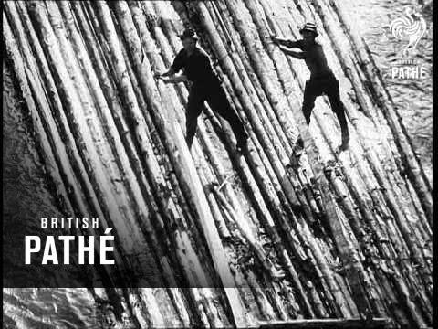 Rafts On The Bistritza River (1968)