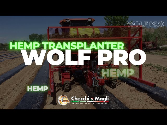 CHECCHI & MAGLI - WOLF PRO 1 ROW for HEMP
