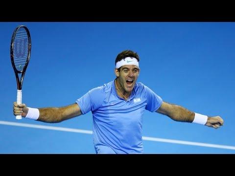 Juan Martin del Potro vs Marin Cilic Davis Cup 2016 FINAL Highlights