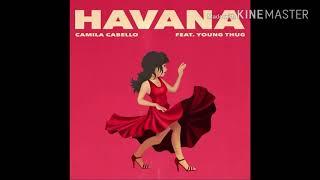 Camila Cabello & Camilizers del Mundo💖🌍🌹, un verdadero Team, Orgullo, no lloren, please😍💓