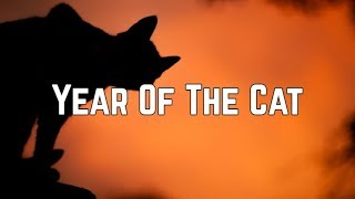 Al Stewart - Year Of The Cat (Lyrics)