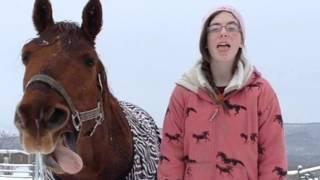 Ponyboy Unicorn Dreams