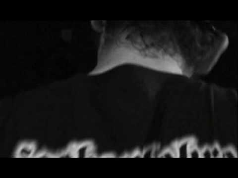 Zabili Mi Żółwia - Wiosna