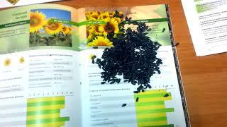 "Семена Подсолнуха"" Сонячний Настрий"" под гербицид Гранстар"